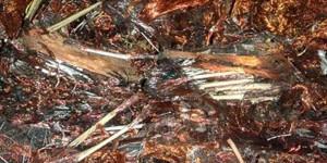 Scrap Copper Kırkambar